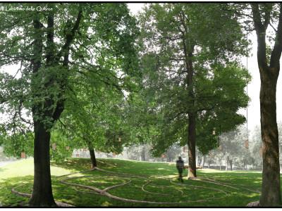 Vista del Labirinto inserito nel boschetto di Querce