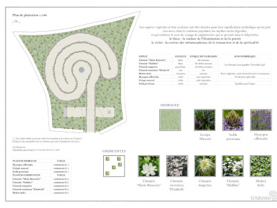 Planimetria e vegetazione