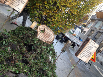 Kepos_Giardini di Natale_Faenza